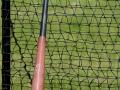 baseball bat_6744