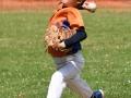 horsham pitcher_2446