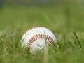 baseball_6589